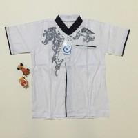 Jual Baju koko anak warna putih bordir ukuran 3 LD70 PB40 Murah