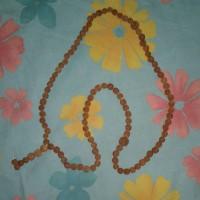 kalung buah jenitri / tasbih buah ganitri / gelang buah genitri