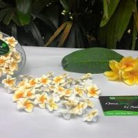 Jual Aplikasi Bunga Jepun Bali 3cm/Kamboja/Flower/Bahan Craft/DIY/Handmade Murah
