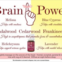 Brain Power Young Living Essential Oil 5ml