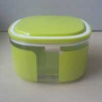 window canister
