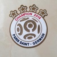 harga Champion Ligue 1 2014 Tokopedia.com