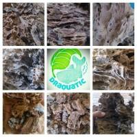 Aquascape - batu eragon perkg