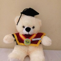 Jual Boneka Hello Kitty Lucu Terbaru - Harga Boneka Hello Kitty ... 4d637f133c