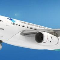 harga DIY Miniatur Papercraft Pesawat Airbus A330-234 Garuda Indonesia Tokopedia.com