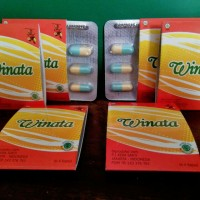 Obat Herbal Asam Urat/Radang Sendi Winata