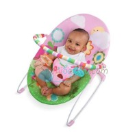 Bright Starts Bouncer Pretty In Pink Sweet Bees And Buggies