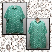 TOPS/KEMEJA BIGSIZE JUMBO CAROLINA COLOURS PLUS