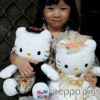 Jual boneka hello kitty wedding/couple/pasangan Murah