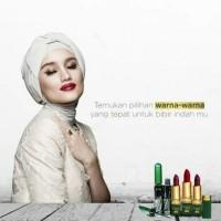 Lipstik Elizabeth Helen MS Lipstick Halal BPOM