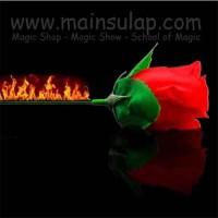 Gimmick Alat Sulap Obor Jadi Bunga Torch To Rose Magic Trick