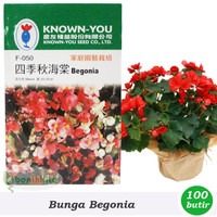 Benih/Bibit Bunga Begonia Mixed (Known-You Seed)
