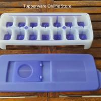 Tupperware Silicone Ice Tray