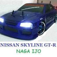 HSP Flying Fish Nissan Skyline GT-R Drift RC Car with LED LIGHT 2.4Ghz