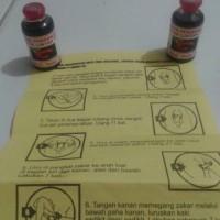 PROMO Minyak lintah asli PAPUA FREE GAMBIR SIAM memperbesar alat vital