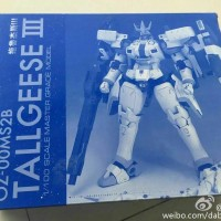 Gundam Tallgeese III Gundam 1/100 MG Daban Model ( P Bandai Ver ) MIB
