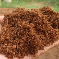 Cocopeat / penganti tanah / kebutuhan Hidroponik