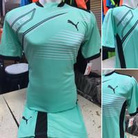 Setelan Jersey Bola Futsal Lokal Polosan Puma Evo Hijau Mint