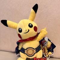 harga Pokemon 2014 Washington Dc World Championship Mascot Plush Tokopedia.com