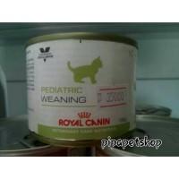 Makanan kucing pediatric weaning