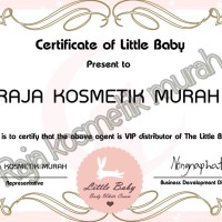SERTIFIKAT DISTRIBUTOR LITTLE BABY