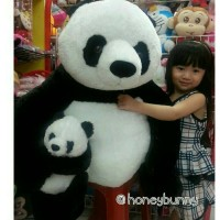 Info Boneka Panda Super Besar Katalog.or.id