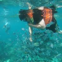 PAKET TOUR PRIVATE TRIP PULAU BELITUNG 3D2N PALING MURAH