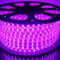 LED Strip 5050 AC 220V 100M