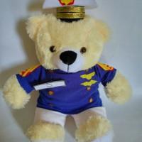 Jual Boneka Wisuda Profesi | Hadiah wisuda Boneka Teddy Bear | Teddy Bear Murah