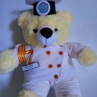 Jual Boneka Wisuda Profesi | Boneka Wisuda Pelayaran | Hadiah Wisuda Murah
