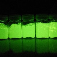 bubuk fosfor slime glow in the dark cat pewarna slime nyala