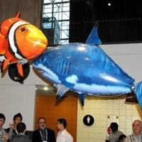 Flying Fish / Air Swimmer Clownfish (Nemo) TTR004