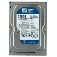 "Hardisk WDC Internal 250GB PC 3.5"""