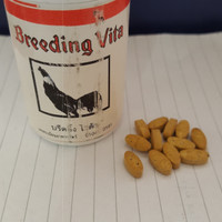Breeding Vita/ Vitamin Pacak Ayam