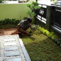 Tukang taman rumput jepang
