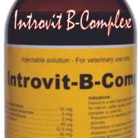 Introvit B-Complex (konsentrasi tinggi+Biotin)