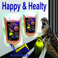 harga Pakan burung Blackthroat, Sanger, Mozambik Tokopedia.com