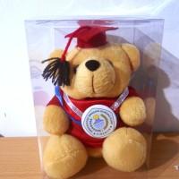Boneka Wisuda Denmark Bear 18cm + box plastik mika grosir