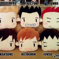 Boneka Bantal 2PM K-Pop