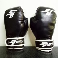 Stamina Boxing Gloves 8 OZ - Imitation