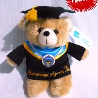 Boneka wisuda Puffy Bear Special color