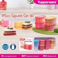 Jual Tupperware Mini Square Set Wadah Kecil Imut Murah