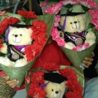 harga Boneka Wisuda Bear 25cm Untuk Kado Wisuda Tokopedia.com