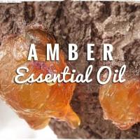 Amber Essential Oil 25 ml / Minyak Atsiri Amber / Ambre / Ambar