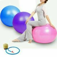 Jual Bola Fitness 65cm + POMPA Olahraga Senam Yoga Murah
