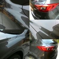 Platinum ExLarge Asia Salon Mobil Detailing Poles Nano Ceramic Coating
