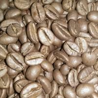 Jual Kopi Robusta Organik Temanggung Roast Bean 250gr Murah