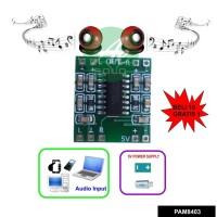 Super Mini Stereo Audio Amplifier 2x3W 5V PAM8403
