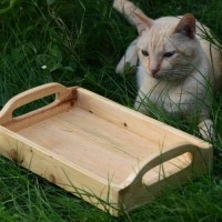 Natural Wooden Tray, Serving Tray, Coffee Table Tray, Nampan, Baki