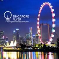 Tiket Singapore Flyer Bianglala + Gardens by the bay@OCBC skyway Anak